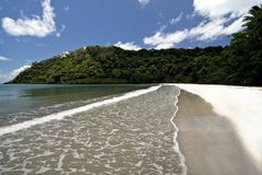 Cape Tribulation Royalty Free Stock Images