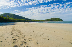 Cape Tribulation. Beach at Cape Tribulation in the Daitree National Park stock photo