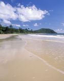 Cape tribulation beach, Queensland Stock Photos