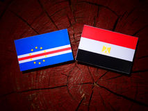 Cape Verde flag with Egyptian flag on a tree stump royalty free stock photography