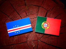 Cape Verde flag with Portuguese flag on a tree stump isolated. Cape Verde flag with Portuguese flag on a tree stump stock illustration