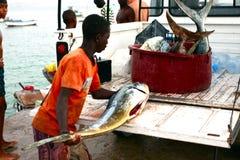 Cape Verdean fisherman Stock Images