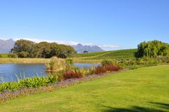 Stellenbosch mountains and vineyards Royalty Free Stock Photo