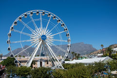 The Cape Wheel at the V&A Waterfront with Table Mountain in the Stock Images