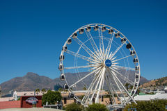 The Cape Wheel at the V&A Waterfront with Table Mountain in the Royalty Free Stock Photos