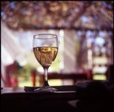 Cape White. Glass of white wine al fresco Stock Image