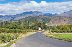 Cape Winelands. The Cape Winelands region is the premier wine producing area of South Africa Stock Photos
