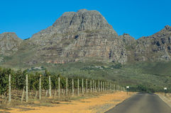 Cape Winelands. The Cape Winelands region is the premier wine producing area of South Africa Stock Photo