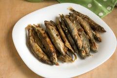 Capelín frito de los pescados imagen de archivo