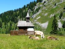 Capela em prados da montanha Foto de Stock