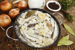 Capelin stewed in milk Royalty Free Stock Image
