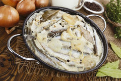 Capelin stewed in milk Stock Photos