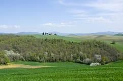 Capella di Vitaleta i Val D ` Orcia, Italien Royaltyfria Bilder