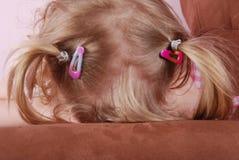 capelli Fotografia Stock Libera da Diritti