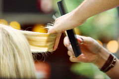 Capelli biondi della guarnizione del parrucchiere con le forbici Immagine Stock Libera da Diritti