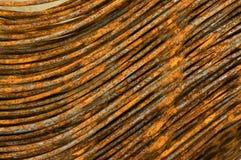 Capelli ferrosi Fotografia Stock