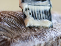 Capelli grigi di tintura. Fotografie Stock Libere da Diritti