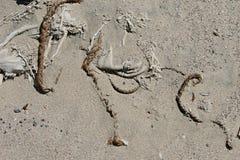 Capelli intrecciati nella sabbia fotografia stock libera da diritti