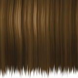 Capelli marroni serici Immagini Stock