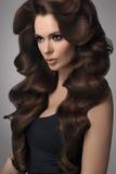 capelli Ritratto di bella donna con capelli neri Alta qualità Fotografia Stock Libera da Diritti