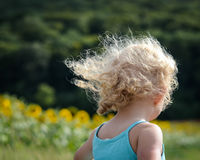 Capelli in vento immagine stock