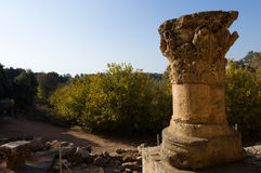 Capernaum, góra błogosławieństwa Fotografia Stock
