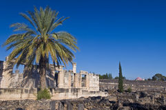 Capernaum synagogue Royalty Free Stock Photo