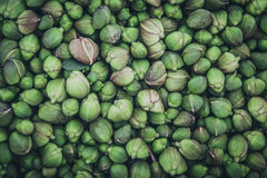 Capers Royalty Free Stock Images