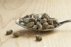 Capers in salt on a spoon Royalty Free Stock Images