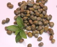 Capers Stock Image