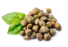 Capers vegetables with basil Royalty Free Stock Photography