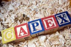 CAPEX tekst na drewnianym bloku obrazy royalty free