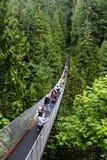 Capilano吊桥在温哥华 免版税图库摄影