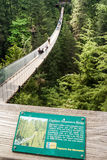 Capilano在Capilano河,温哥华的吊桥 免版税库存照片
