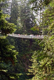 Capilano Aufhebung-Brücke Stockfoto