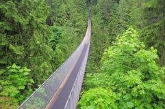 Capilano Brücke lizenzfreie stockbilder