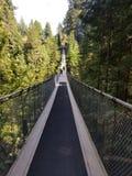 Capilano-Brücke stockfoto