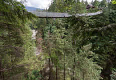 Capilano Bridge in Vancouver Royalty Free Stock Photo