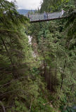 Capilano Bridge in Vancouver Royalty Free Stock Image