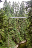 Capilano Bridge in Vancouver Royalty Free Stock Photos