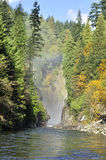 Capilano Creek in the autumn Royalty Free Stock Photo