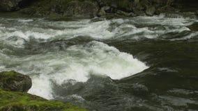 Capilano-Fluss-Stromschnellen, Nord-Vancouver stock video footage
