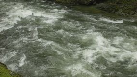 Capilano-Fluss-Stromschnellen, Nord-Vancouver stock video
