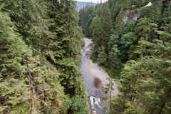 Capilano River in Vancouver Royalty Free Stock Image