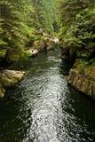 Capilano River, Vancouver, Canada Royalty Free Stock Photo