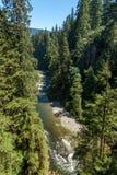 Capilano rzeka na słonecznym dniu Zdjęcia Royalty Free