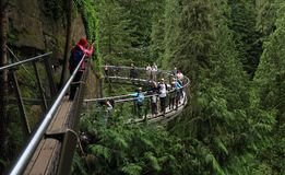 Vancouver, Canada: Tourism - Cliffwalk in Capilano Suspension Bridge Park Royalty Free Stock Photography