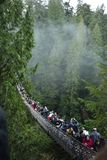 Capilano Suspension Bridge stock photography