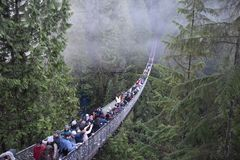 Capilano Suspension Bridge stock photos