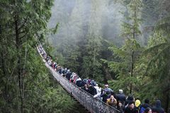Capilano Suspension Bridge stock images